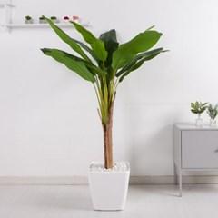바나나트리set 165cm_KO(5-6) 조화 나무 인조 FREOFT_(1822528)