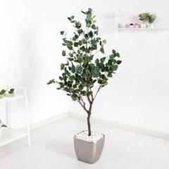 유카리나무set 165cm_KO (3-4) 조화 나무 인조 FREOFT_(1822523)