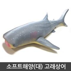 소프트 해양(대)_고래상어