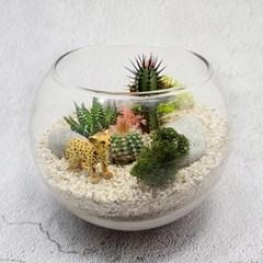 다육 테라리움 DIY 키트 - 동물 시리즈(15cm)
