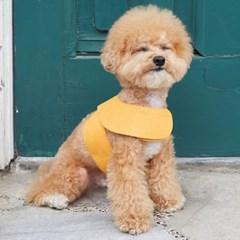 부드럽고 가벼운 올데이하네스(yellow)