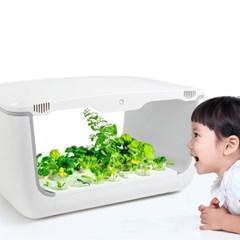 스스로 자라는 스마트 야채재배기