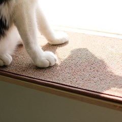 고양이수납선반_냥반_오픈형600