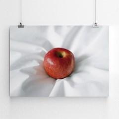 Apple (사과)