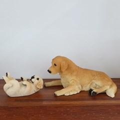 골드리트리버 강아지 모자 2P세트