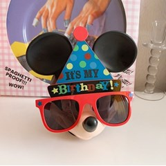 Party Hat Glasses 파티모자안경