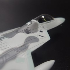 F22 랩터 Raptor 스텔스 전투기 공군 조종사 F-22