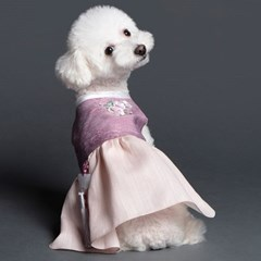 매종드독 강아지한복 윤슬 한복_(1580957)