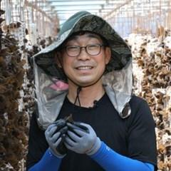 [산지직송]마이산오형제 무농약 건목이버섯 50g