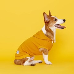 플로트 스탠다드 민소매후드 강아지옷 옐로우_(898206)