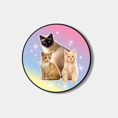 cat love 스마트톡