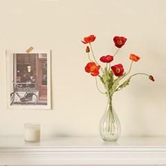 프리미엄 양귀비 물방울호리병set [4color]_(729267)