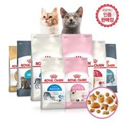 [로얄캐닌] 고양이사료 랙돌 10kg