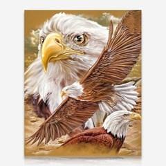 이글이글 독수리 DIY 보석십자수 십자수 비즈세트_(2462520)