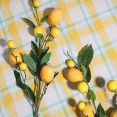 상큼 레몬 조화 가지_(2032020)