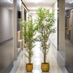 자연을 담은 인조 대나무 조화 165cm 185cm