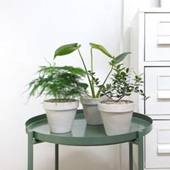 saturday 여유로움을 담은 식물+샌드컬러 독일토분