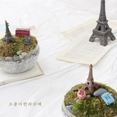 파리여행 테라리움 DIY