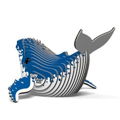 도도랜드 혹등고래