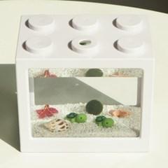 심플 바다 국산 마리모 키우기 DIY 세트(마리모 :소)