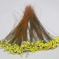 노란 안개꽃