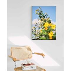 뚱딴지 꽃 (5070 size) - Jitten 인테리어 포스터