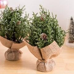 데인티진트리 14cm 크리스마스 장식 소품 TRNOES
