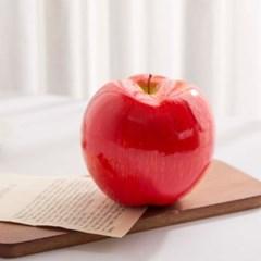 사과 모형-중