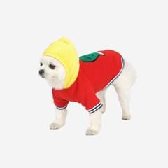강아지옷 기모후드 티셔츠 애견 겨울의류 반려견 패