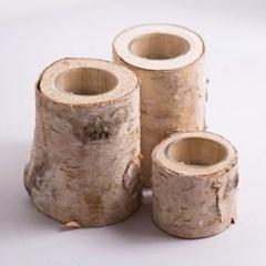 자작나무 촛대