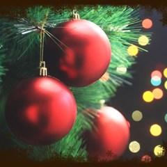 6EA 레드 크리스마스 무광볼(8cm) 성탄장식