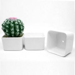 인테리어 도자기화분 다육이 꽃 식물 분갈이 흰색 중형 화분