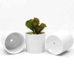 인테리어 원형 실내 화분 책상 다육이 꽃 중형 식물 화분