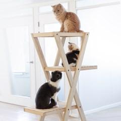 [올리빙] 고양이 원목 캣타워 5단