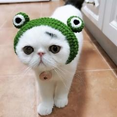 파베르 반려동물 귀마개 니트 모자
