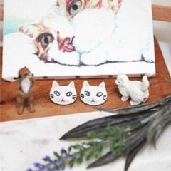 ollia 플랫 고양이 귀걸이