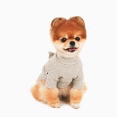 [퍼리굿] 강아지 목폴라 골지 원피스 겨울옷 (그레이)