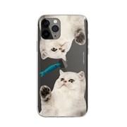 [댓츠어포인트] 고양이 장난감 케이스