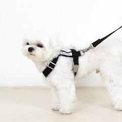 [포에브리바리] 하네스 (블랙) - harness (black)