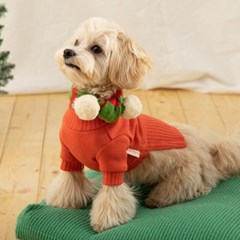 [mungmoong] 풀오버 스웨터 오렌지