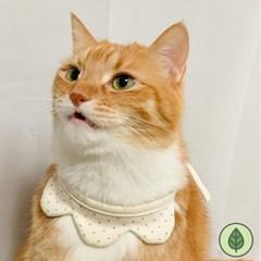개달당 오가닉 왕관 꽃 턱받이 강아지턱받이 고양이턱받이