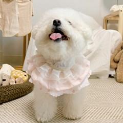 개달당 핑크 셔링 2단 3단 레이스 케이프 강아지케이프 고양이케이프