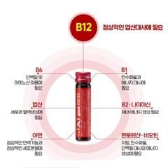 TNT골드 비타민 (30병 X 2EA) 2개월분 / 비타민B12 3000mcg 함유