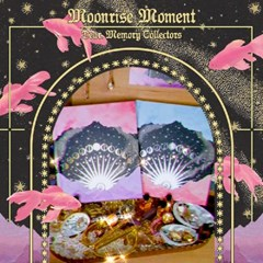 Moonrise Moment - Journal (4type)
