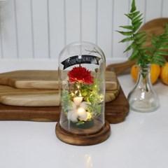 비누꽃 카네이션 플라워 유리돔 레드 어버이날 선물_(2305252)