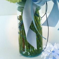 블루사파이어(Blue Sapphire)