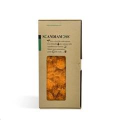 실내공기정화식물-스칸디아모스 500g