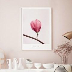 핑크 목련 꽃 그림 인테리어 액자 모음