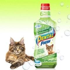 고양이 가글 치약 덴탈 치석 관리 구취제 236ml