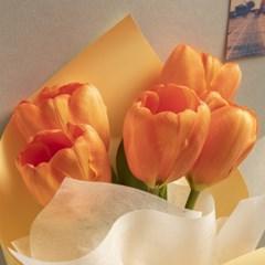 자몽 튤립 꽃다발 (생화, 전국택배)